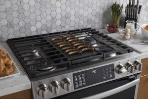 best gas range for home chef
